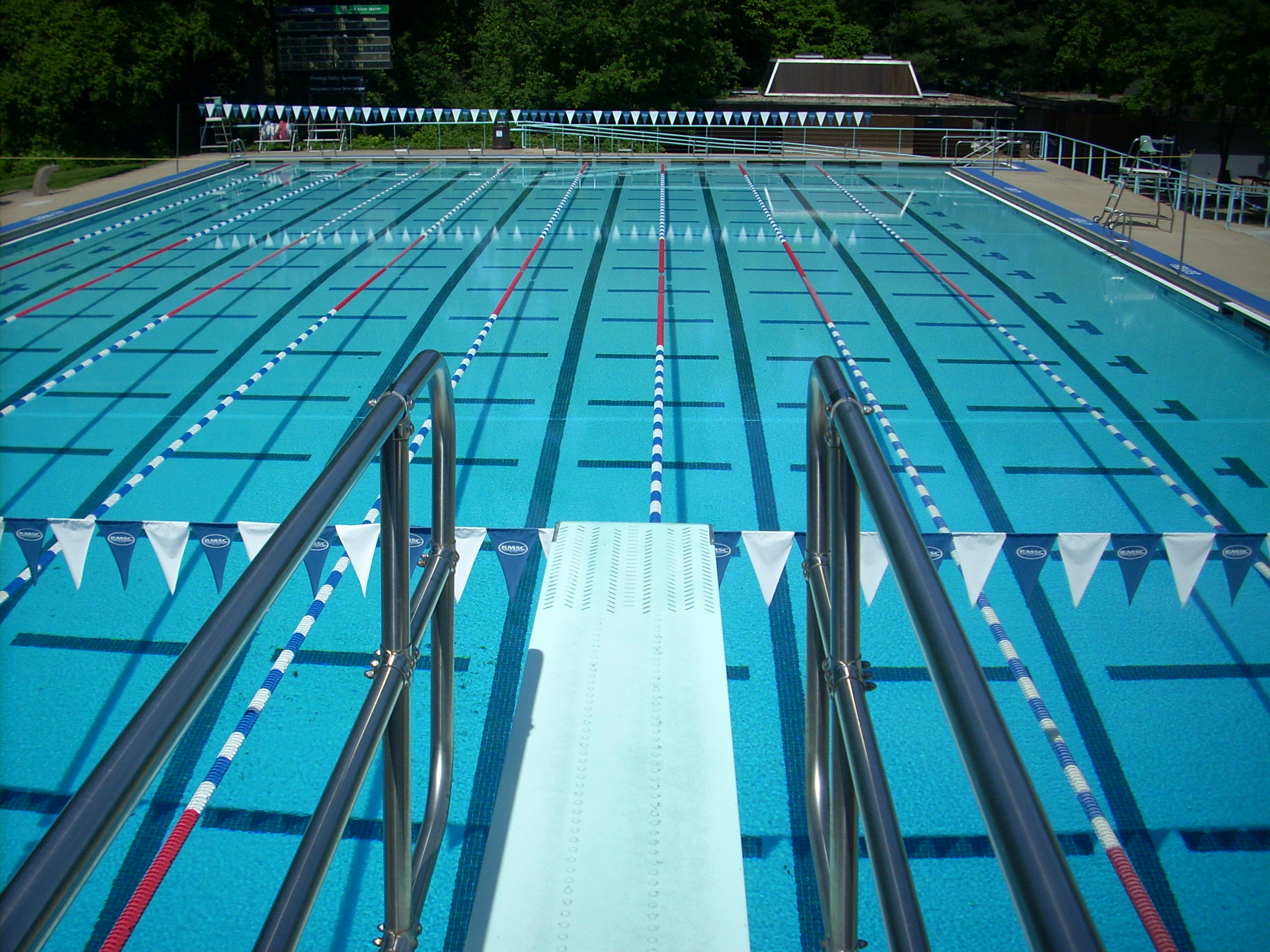 Swimming pool cost analysis spprcspprc for Swimming pool refurbishment costs